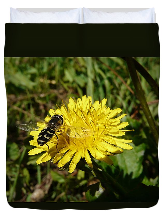 Wasp Duvet Cover featuring the photograph Wasp Visiting Dandelion by Valerie Ornstein