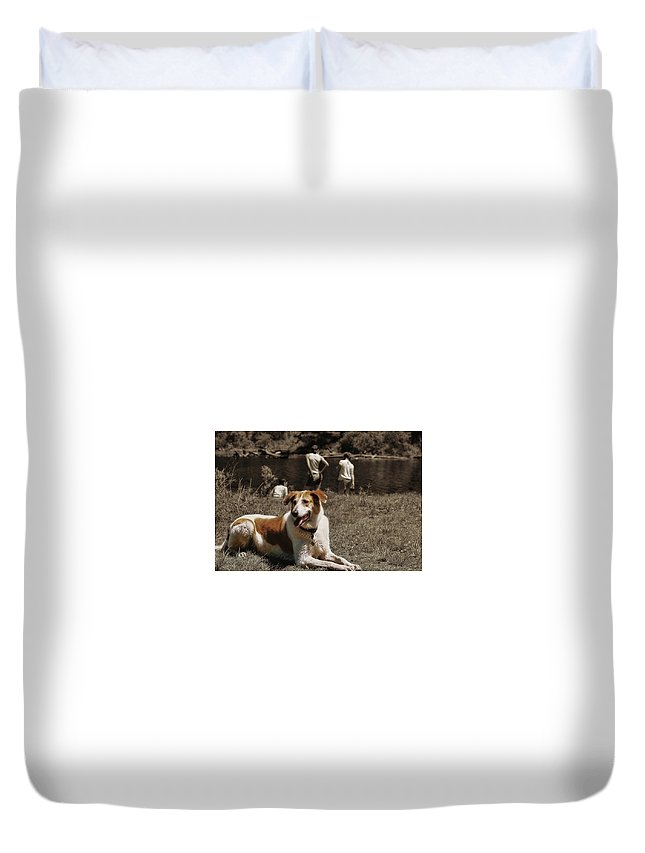 Dog Duvet Cover featuring the photograph Watchdog by JAMART Photography