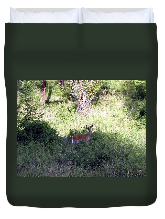Deer Duvet Cover featuring the photograph Watchful by Will Borden