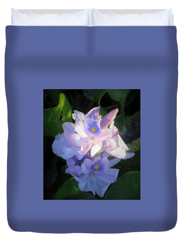 Purple Duvet Cover featuring the photograph Water Hiacynth by Deb Lanford