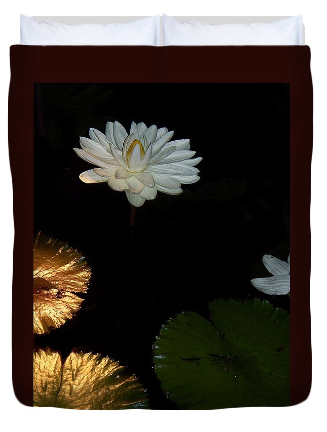 Water Lilies Duvet Cover featuring the painting Water Lilies And Pads by Eric Schiabor