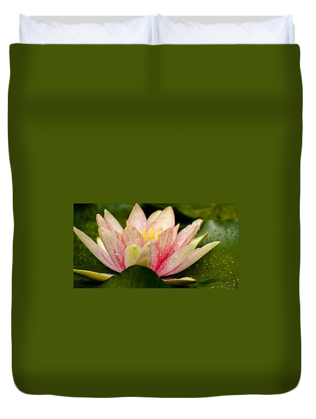 J Paul Getty Duvet Cover featuring the photograph Water Lilly At Eye Level by Teresa Mucha
