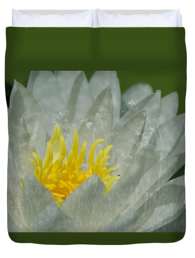 Water Lily Duvet Cover featuring the photograph Water Lilly Morph by Christina Alcantara