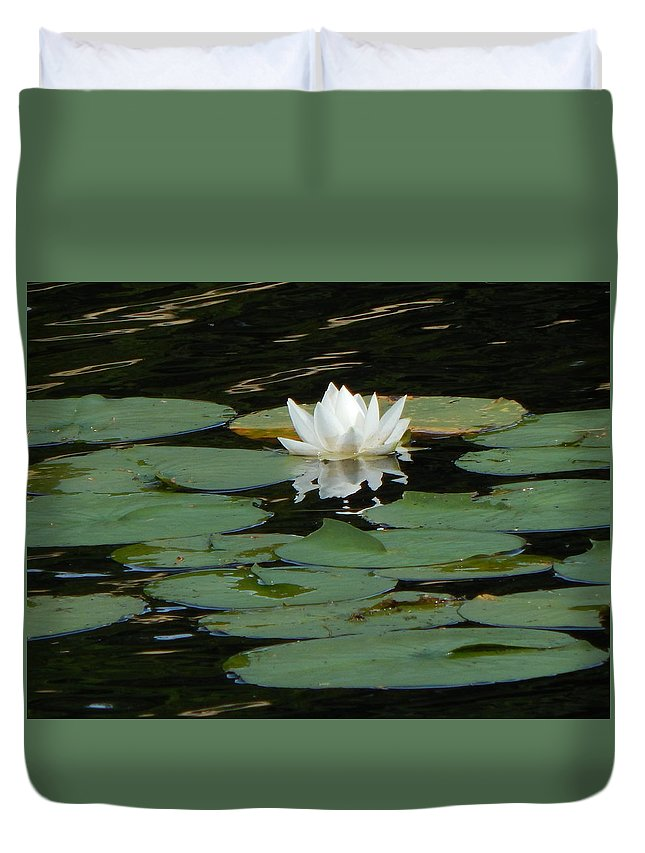 Water Lily Duvet Cover featuring the photograph Water Lily by Amanda Holt