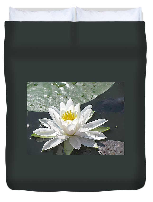 Background Duvet Cover featuring the photograph Water Lily by Jack R Perry