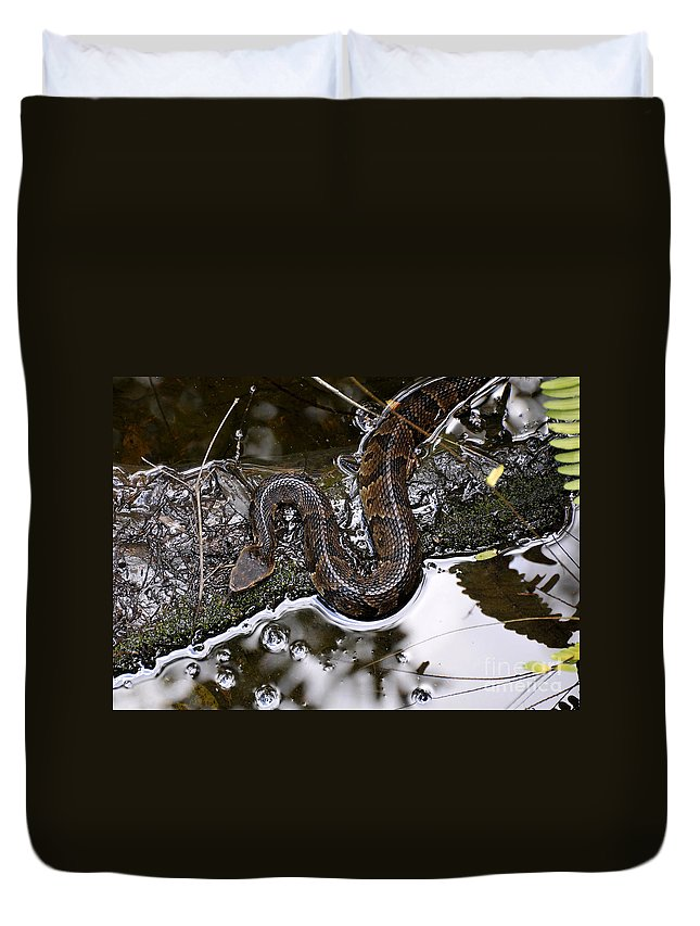 Water Moccasin Duvet Cover featuring the photograph Water Moccasin by David Lee Thompson