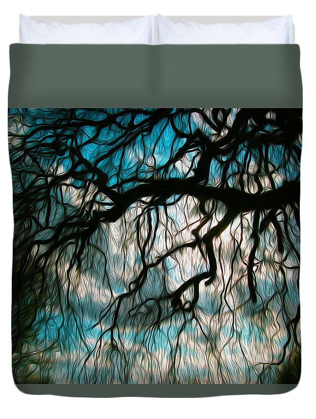 Trees Duvet Cover featuring the photograph Water Willow by Mykel Davis