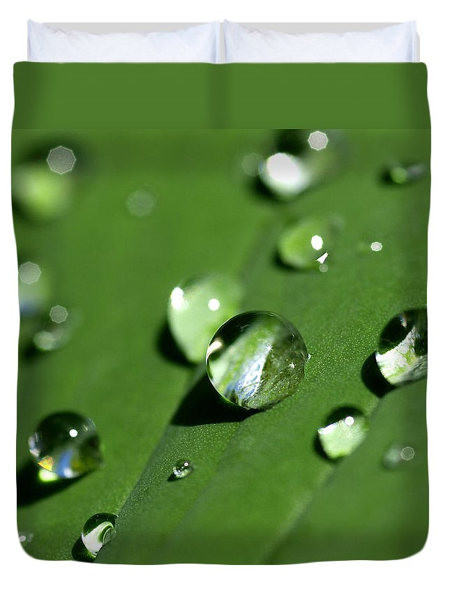 Dew Duvet Cover featuring the photograph Waterdrops by Melanie Viola