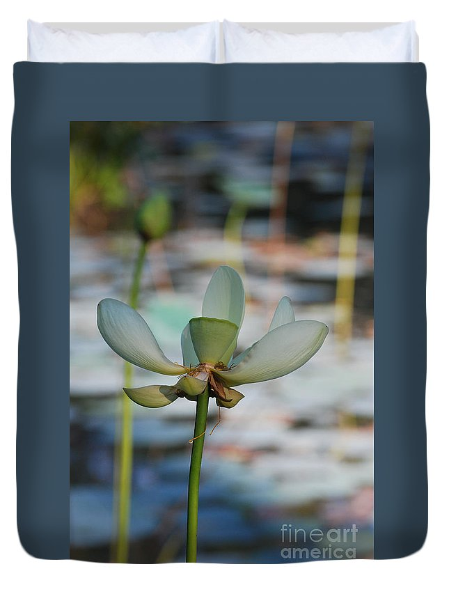 Botanical Duvet Cover featuring the photograph Waterlily Wash Vertical by Heather Kirk