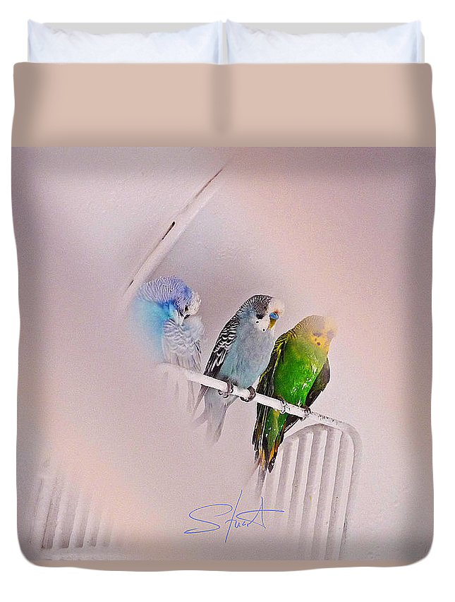 Birds Duvet Cover featuring the photograph We Three Birds by Charles Stuart