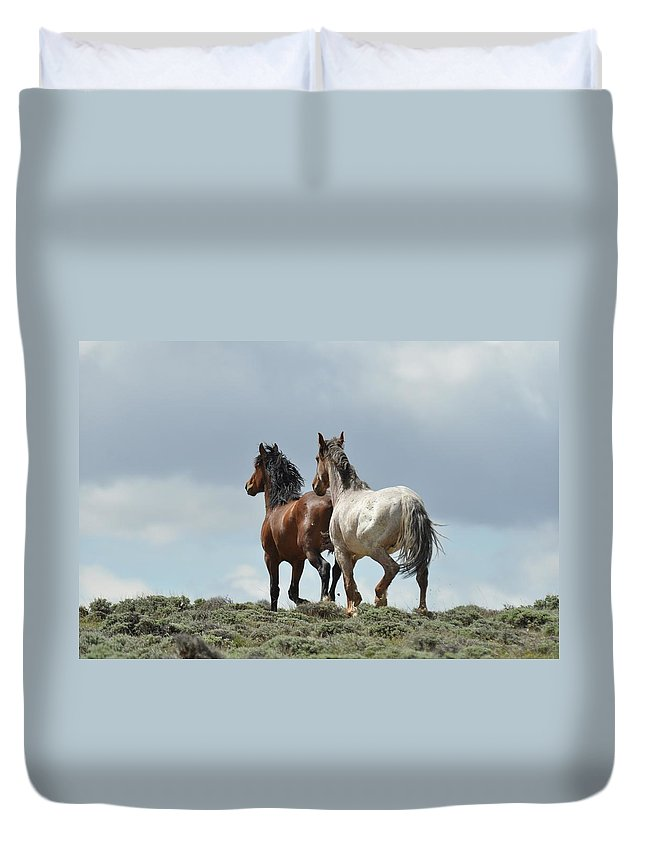 Wild Horses Duvet Cover featuring the photograph We Will Be Over the Hill in a Few Seconds by Frank Madia