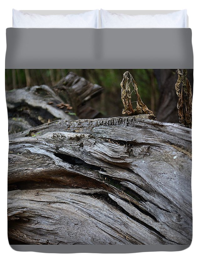 Wright Duvet Cover featuring the photograph Weathered Wonder by Paulette B Wright
