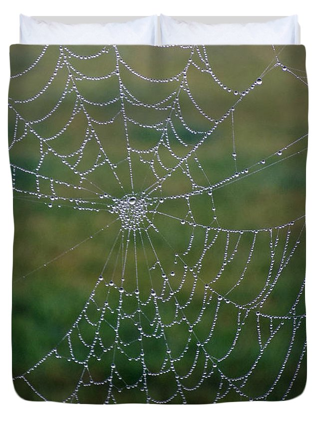 Spider Web Duvet Cover featuring the photograph Web After The Storm by William Tasker