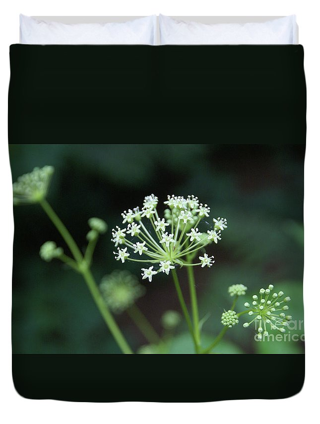 Wildflower Duvet Cover featuring the photograph Web Design by Linda Shafer