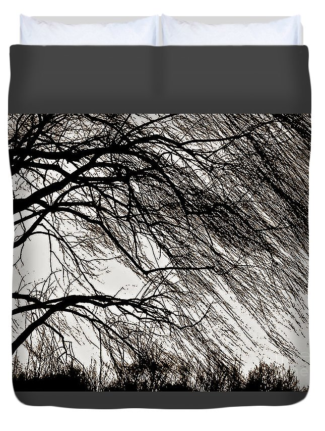 Weeping Willow Duvet Cover featuring the photograph Weeping Willow Tree by Carol F Austin