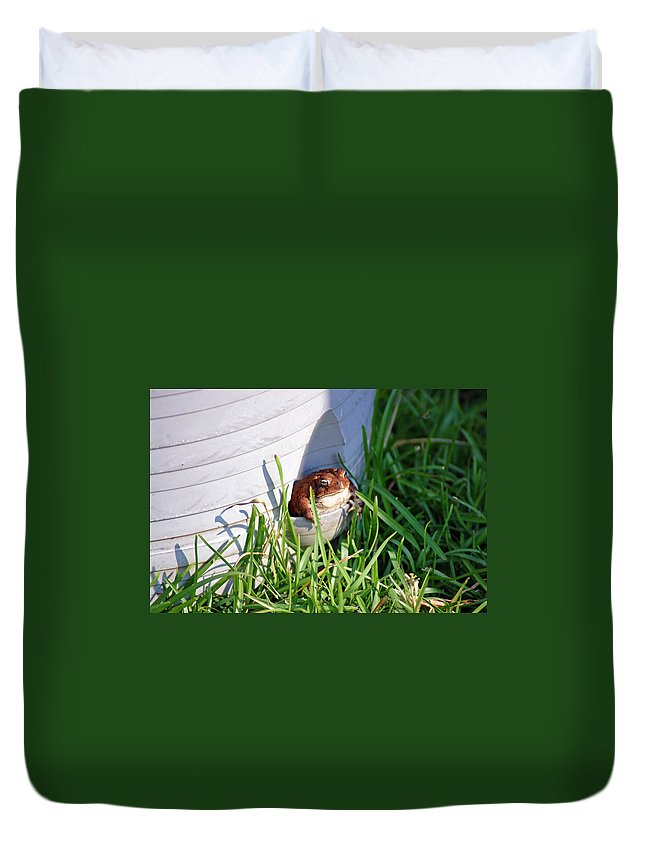 Frog Duvet Cover featuring the photograph Welcome Home by Donna Bentley