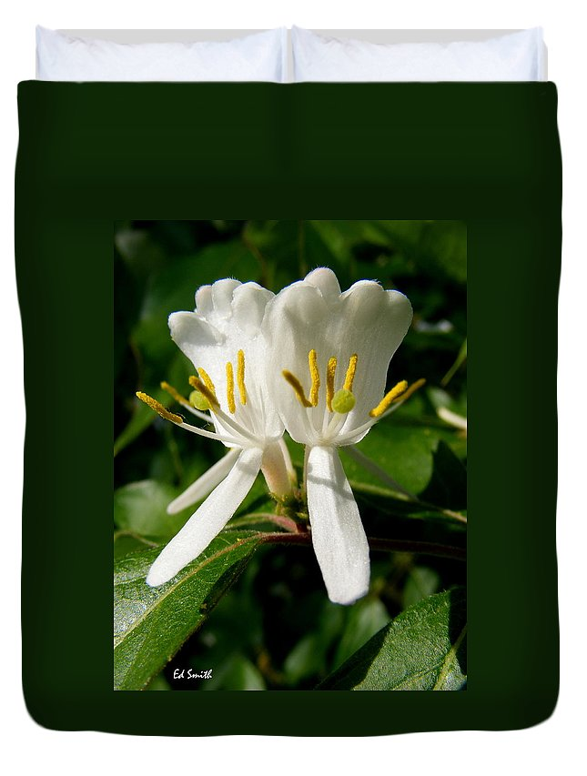 Welcome My Friends Duvet Cover featuring the photograph Welcome My Friends by Ed Smith