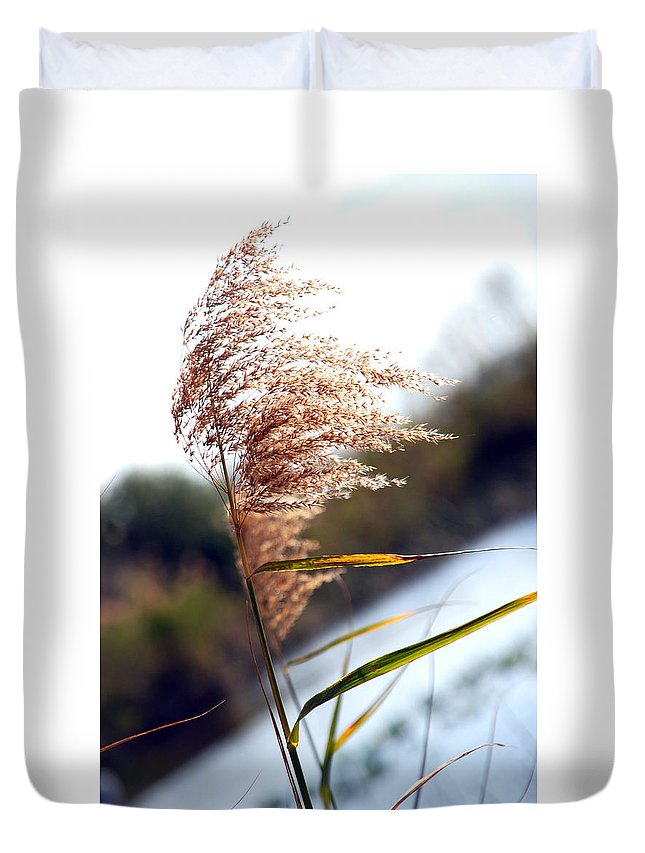 Sea Grass Duvet Cover featuring the photograph West Wind Today by Susanne Van Hulst