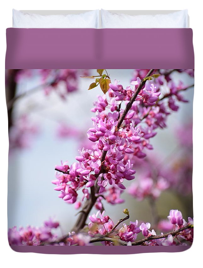 Cleveland Metroparks Duvet Cover featuring the photograph Westcreek Reservation 13 by James Richmond