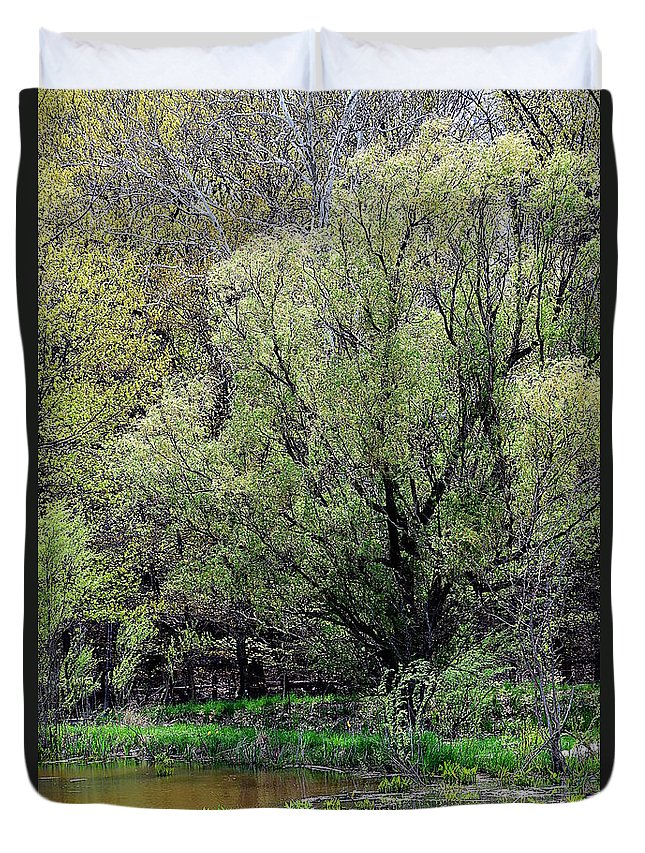 Cleveland Metroparks Duvet Cover featuring the photograph Westcreek Reservation 5 by James Richmond