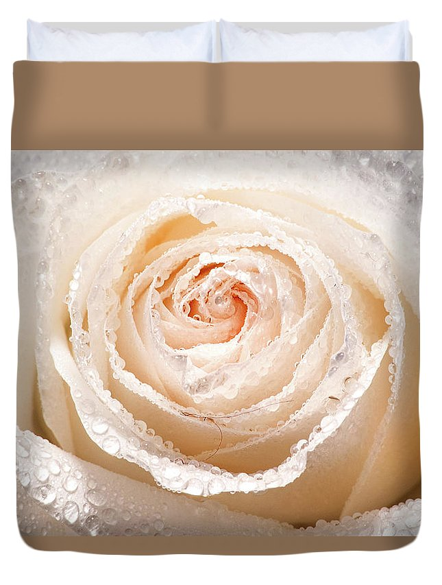 Rose Duvet Cover featuring the photograph Wet White Rose by Don Johnson