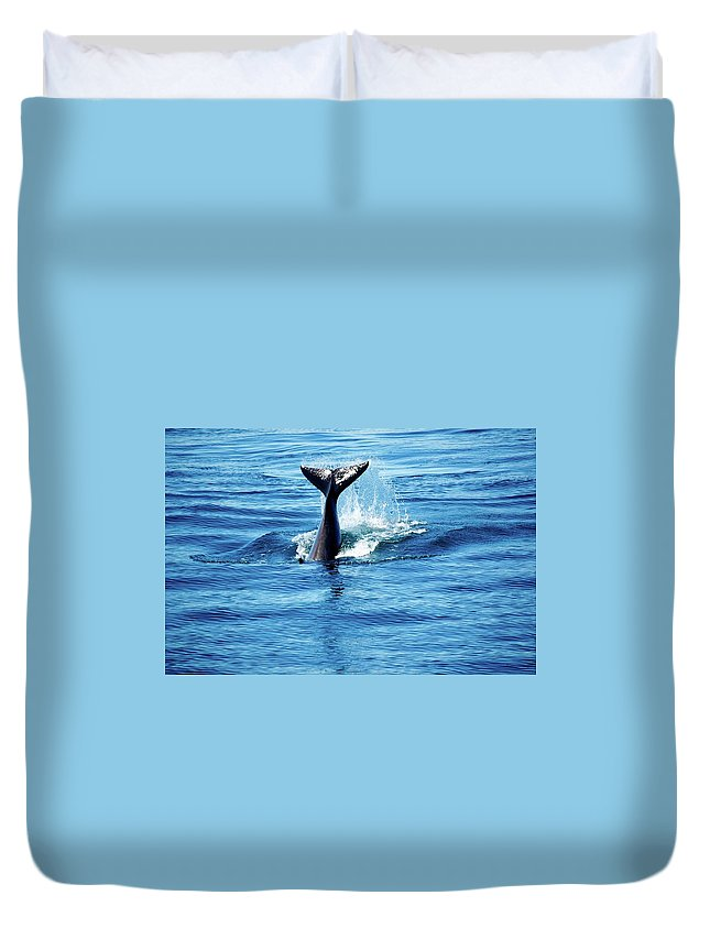 Ocra Whales J Pod Duvet Cover featuring the photograph Whale Tail by Craig Perry-Ollila