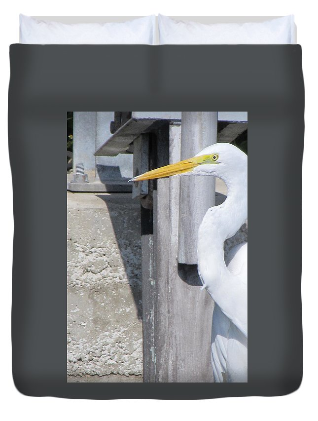 Great Egret Duvet Cover featuring the photograph What Fish by ChaNooga Annie