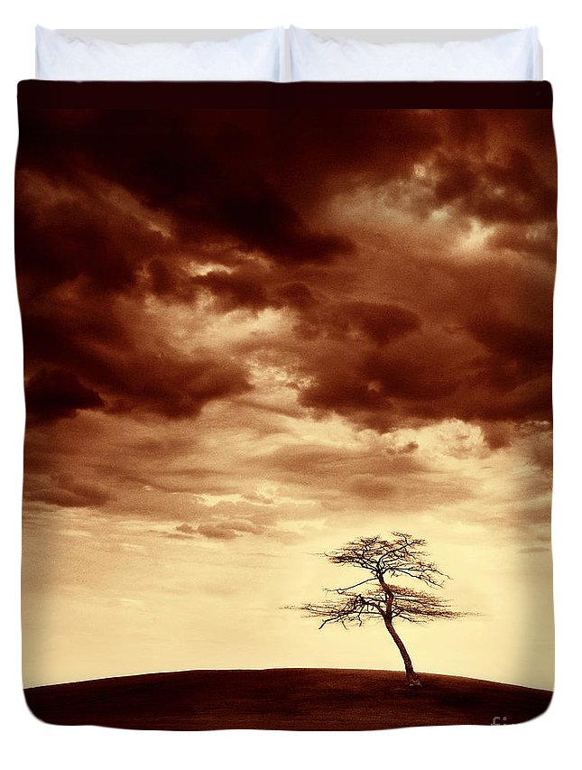 Tree Duvet Cover featuring the photograph What Will Be The Legacy by Dana DiPasquale