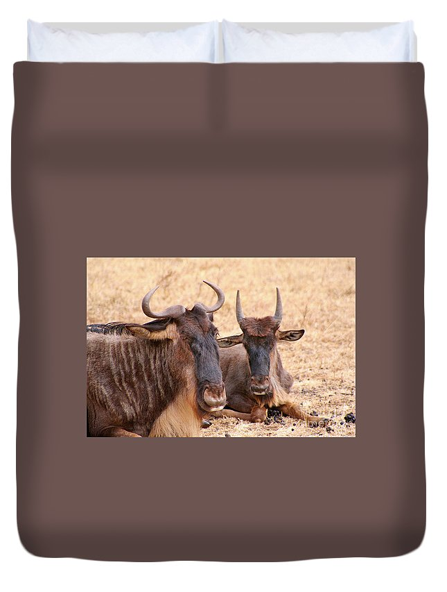 Gnu Duvet Cover featuring the photograph What's Gnu? by Bruce Block