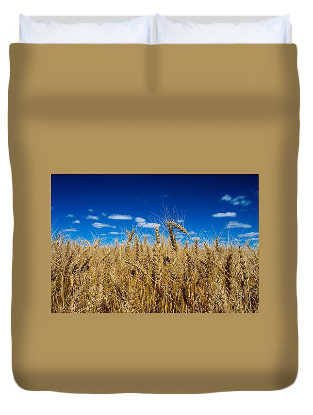 Wheat Duvet Cover featuring the photograph Wheat Field by Bob Mintie