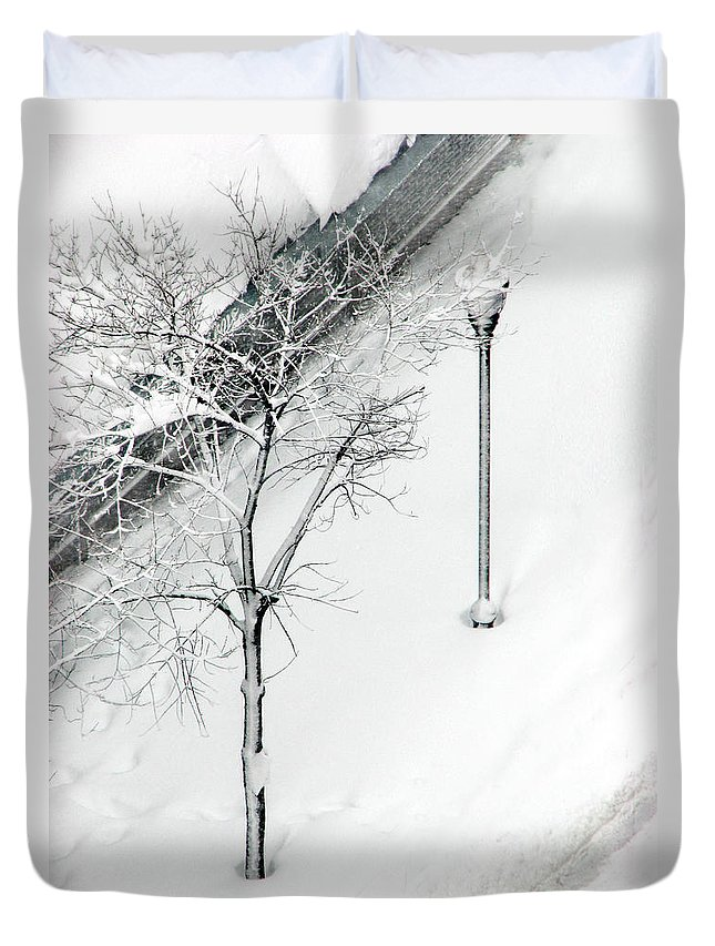 Black Duvet Cover featuring the photograph When Nature Quiets the City by Dana DiPasquale