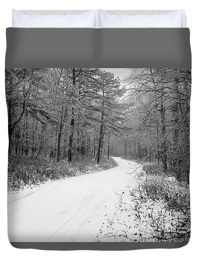 Winter Duvet Cover featuring the photograph Where Will It Lead by Jean Macaluso
