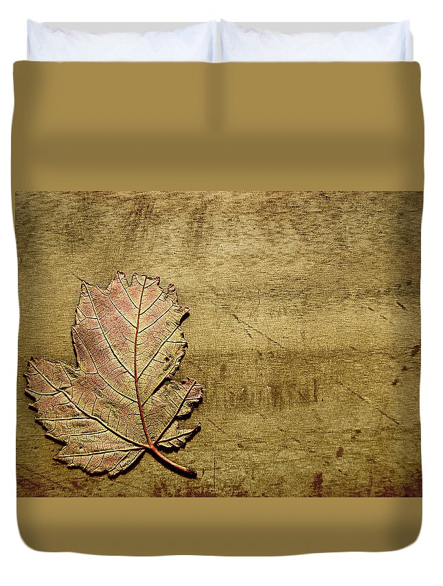 Autumn Duvet Cover featuring the photograph ...while You Fall Apart by Dana DiPasquale