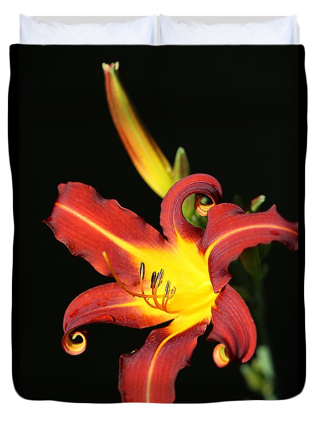 Daylily Curl Duvet Cover featuring the photograph Whimsical Daylily by Tammy Pool