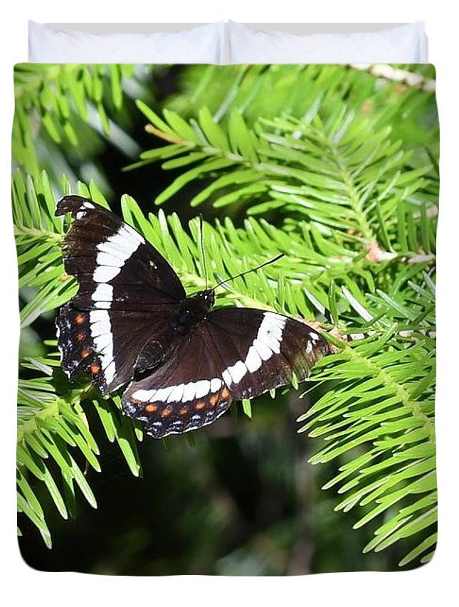 Butterflies. White Admiral Duvet Cover featuring the photograph White Admiral On Tree by Hella Buchheim