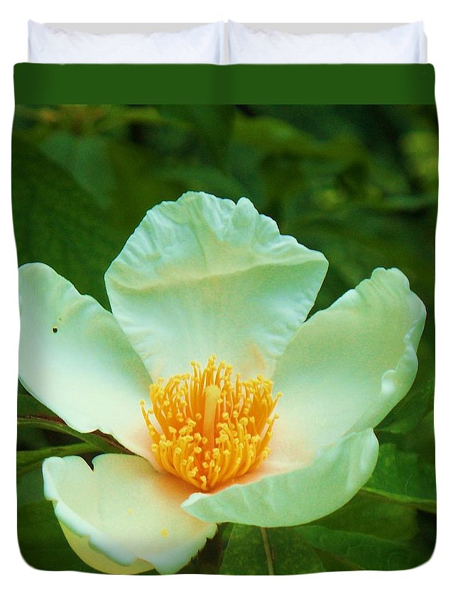 Flora Duvet Cover featuring the painting White And Yellow Flower by Eric Schiabor