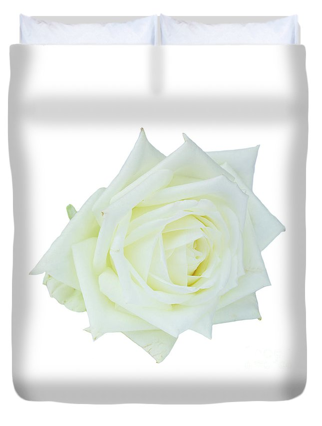 Rose Duvet Cover featuring the photograph White Rose by Anastasy Yarmolovich