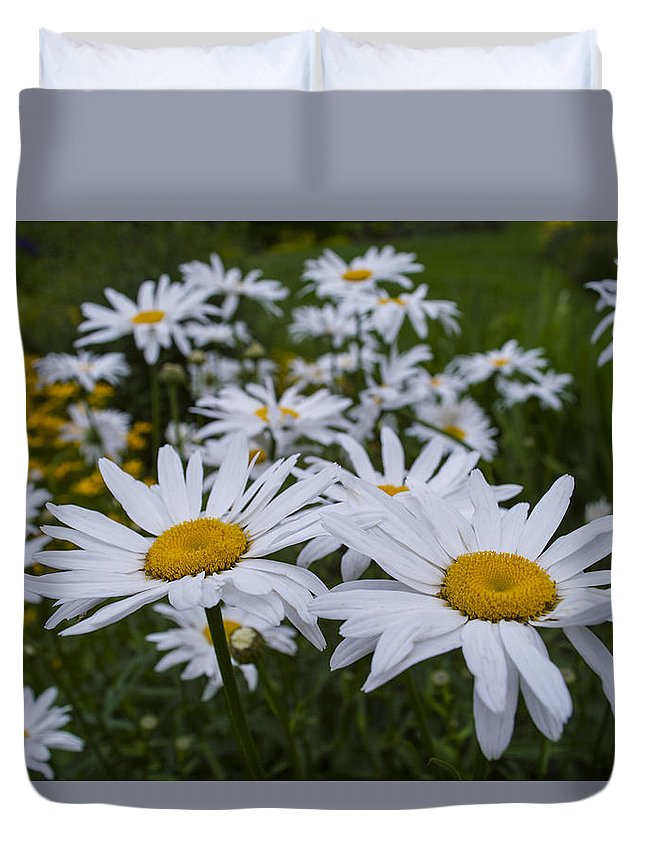 Flower Duvet Cover featuring the photograph White Daisy by William Oakley