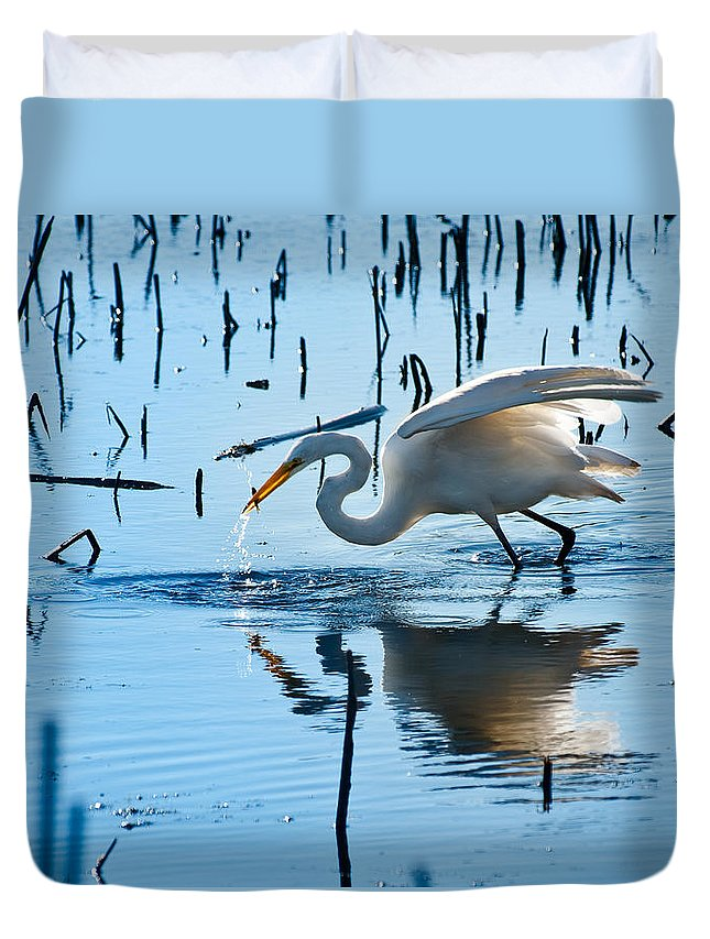 Bird Duvet Cover featuring the photograph White Egret At Horicon Marsh Wisconsin by Steve Gadomski