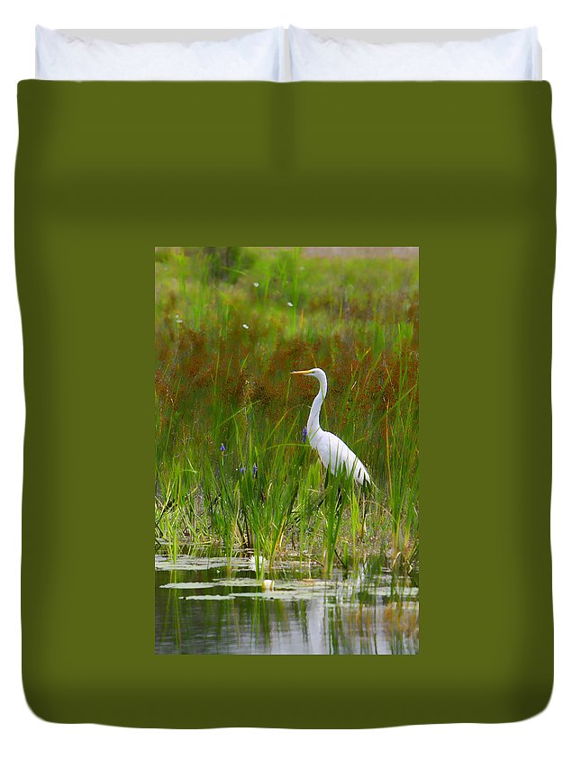 Bird Egret White Florida Swamp Pond Photograph Photography Duvet Cover featuring the photograph White Egret In Waiting by Shari Jardina