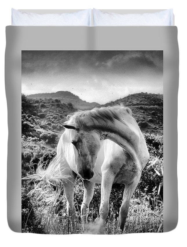 Horse Duvet Cover featuring the photograph White Elegance by Robin Fifield