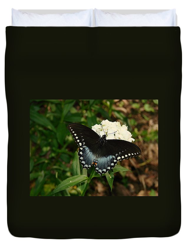 Nature Duvet Cover featuring the photograph White Flowered Butterfly by Mary Halpin