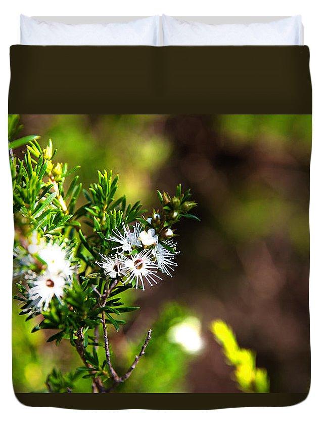 Kunzea Ambigua Duvet Cover featuring the photograph White Flowers Of Kunzea Ambigua by Miroslava Jurcik