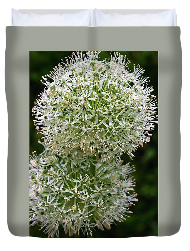 Flower Duvet Cover featuring the photograph White Globe Thistle 2 by Kristina Jones