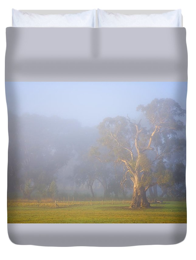 Tree Duvet Cover featuring the photograph White Gum Morning by Mike Dawson