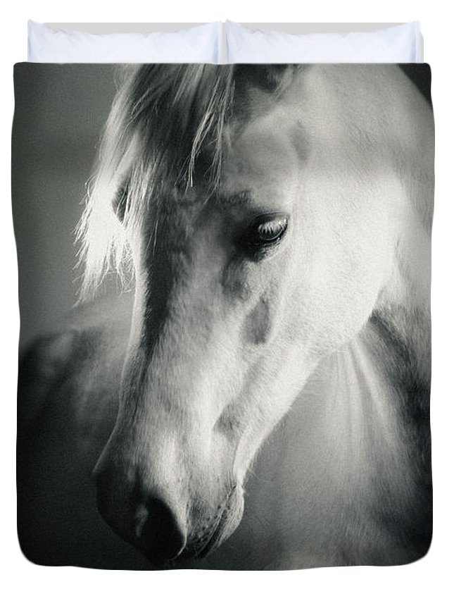 95f402984ee Horse Duvet Cover featuring the photograph White Horse Head Art Portrait by Dimitar  Hristov