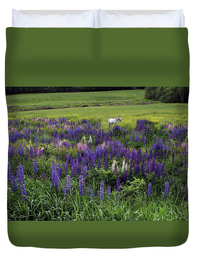 White Duvet Cover featuring the photograph White Horse In A Lupine Field by Wayne King