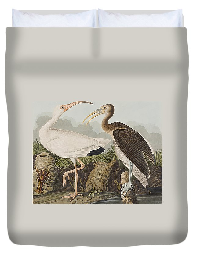 Ibis Duvet Covers