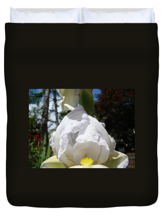 Iris Duvet Cover featuring the photograph White Iris Flower Art Prints Canvas Irises Artwork by Baslee Troutman