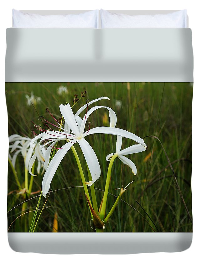 Lily Duvet Cover featuring the photograph White Lilies In Bloom by Christopher L Thomley